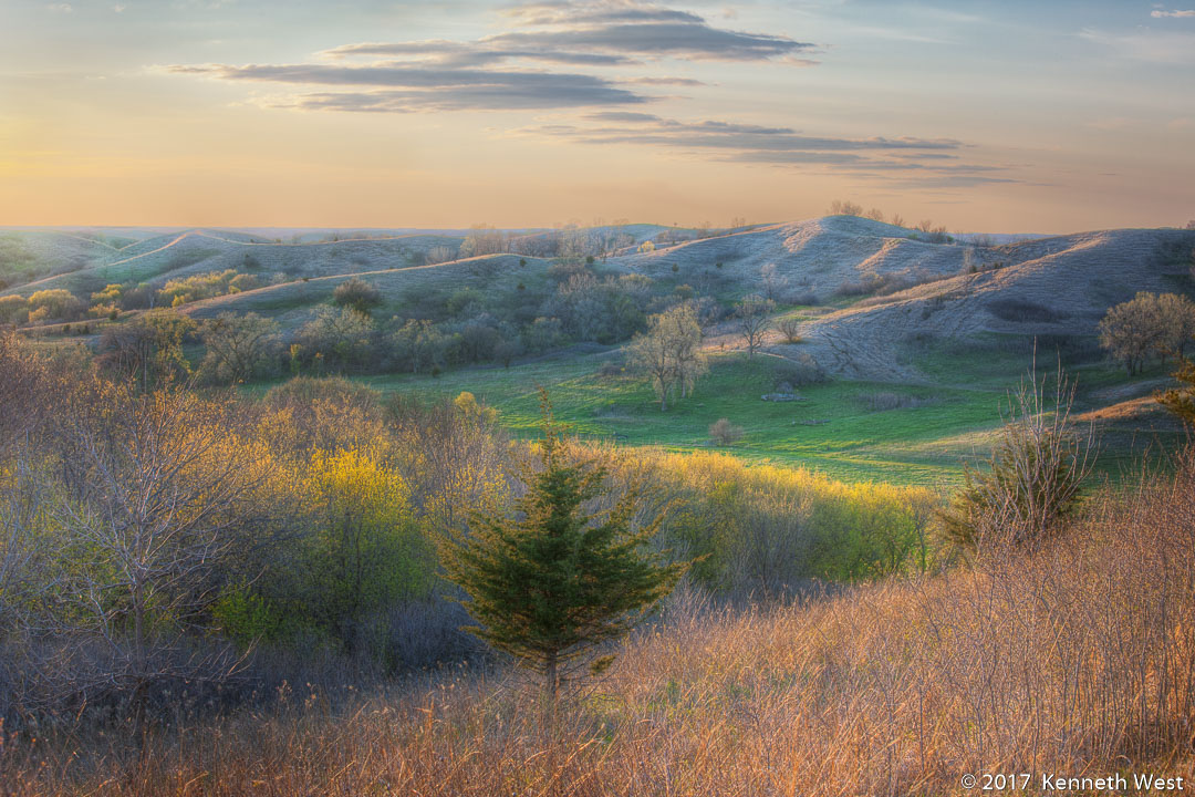 Prairie Evening - LHKW-004-S - The late afternoon sun illuminated the remains of last Fall's tall grass and the yellow green of a new Spring. The first hints of a new season were beginning to appear in this lovely valley in the Broken Kettle Grassland Preserve, located in western Iowa's Loess Hills. Standard 2 x 3 Proportion -