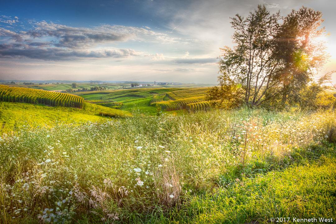 jr landscape