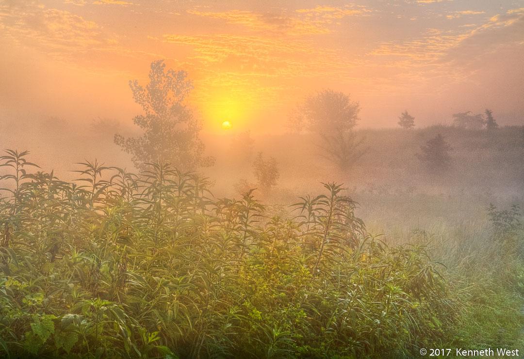 Dawn's Light - SU-017-S - Misty monring light on the trail - Standard 2 x 3 Proportion