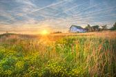 Rural Landscapes