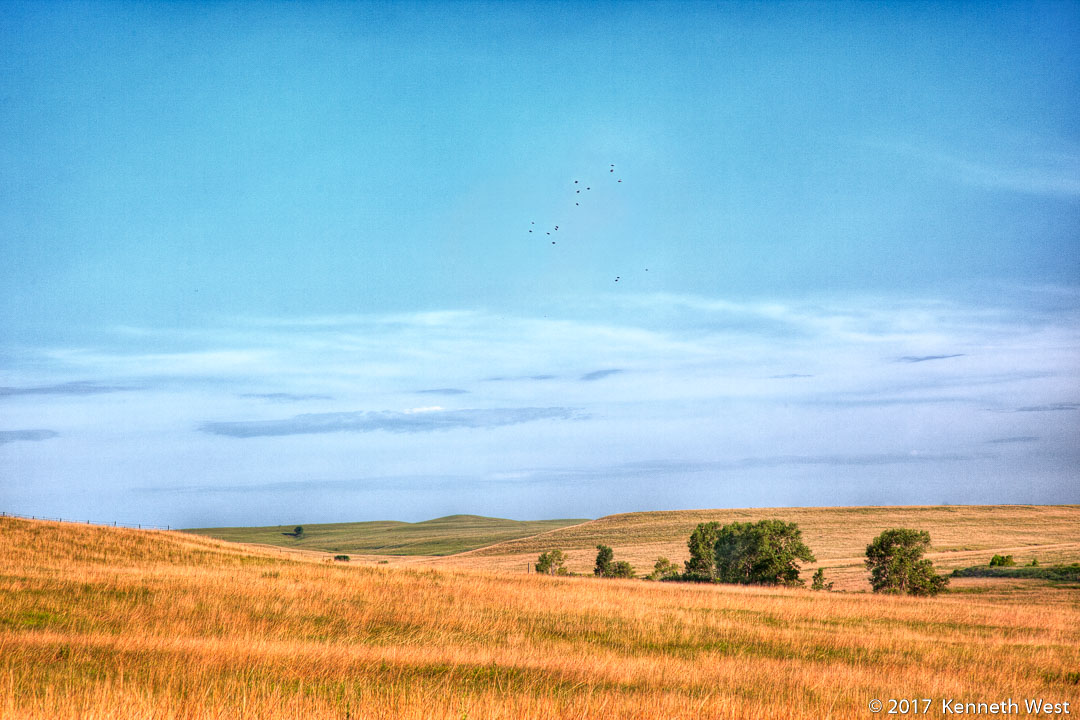 Birds Flying over Prairie - FH-013-S - National Tallgrass Prairie Preserve, Flint Hills Kansas - Standard Proportion 2 x 3