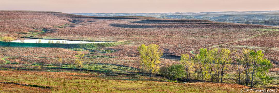 Prairie Spring - FH-019-P - National Tallgrass Prairie Preserve, Flint Hills Kansas - Panorama Proportion 1 x 3